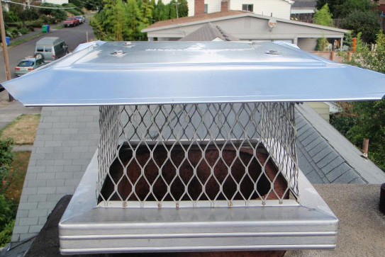 Chimney Cap and Vent Cap Installation